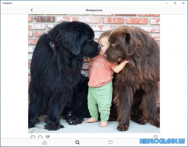 Instagram на компьютер