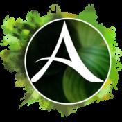 ArcheAge последняя версия