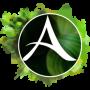 ArcheAge онлайн играть