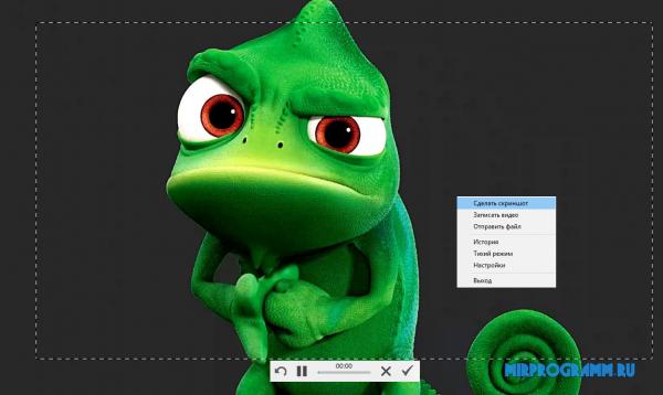 Скриншотер для новая версия